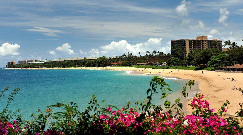 sky water Coast Nature Beach River shore Sea horizon caribbean Ocean Resort Lake flower overlooking day