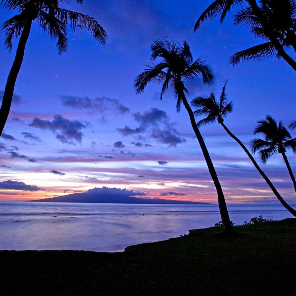 Ocean Scenic views Sunset tree sky water plant horizon palm Sea cloud Beach Coast dawn dusk sunrise morning arecales evening afterglow sunlight palm family Lake shore overlooking distance