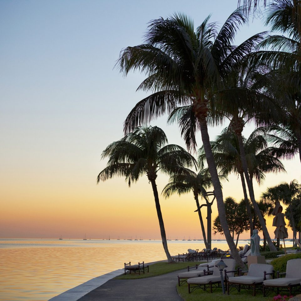 Lounge Sunset Tropical Waterfront water tree sky Beach palm plant palm family Sea Ocean arecales woody plant Coast tropics caribbean cape flowering plant dusk shore lined sandy distance