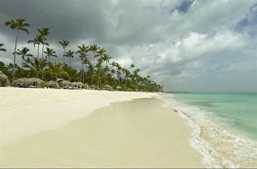 sky Beach water Nature habitat shore Coast Sea Ocean sand wind wave caribbean wave sandy