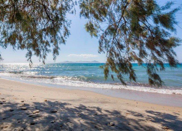 Beach sky water tree shore Nature Coast Sea Ocean sand palm sandy