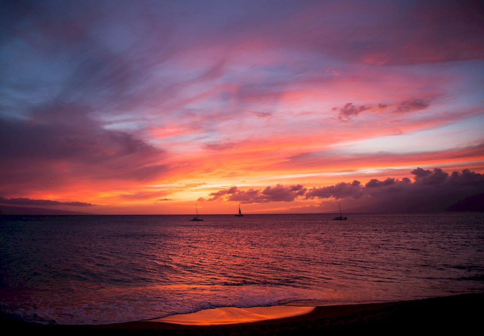 water sky Sunset afterglow Sun sunrise horizon Sea dawn cloud red sky at morning Ocean dusk setting Coast evening morning Nature Beach clouds shore distance