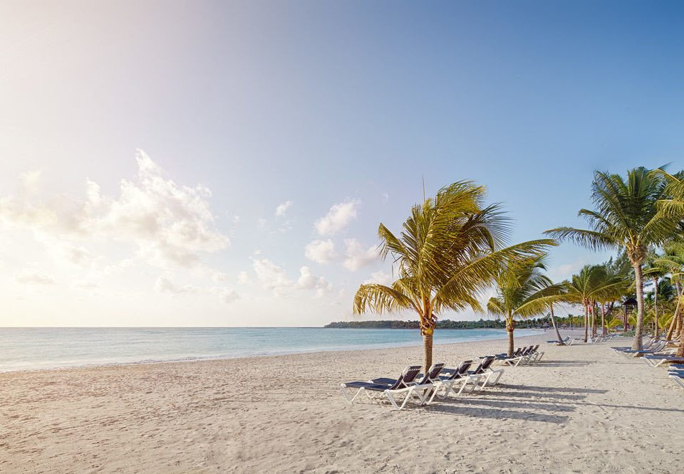sky Beach water shore Nature Sea tree Ocean Coast horizon arecales sand caribbean palm family cape sandy day
