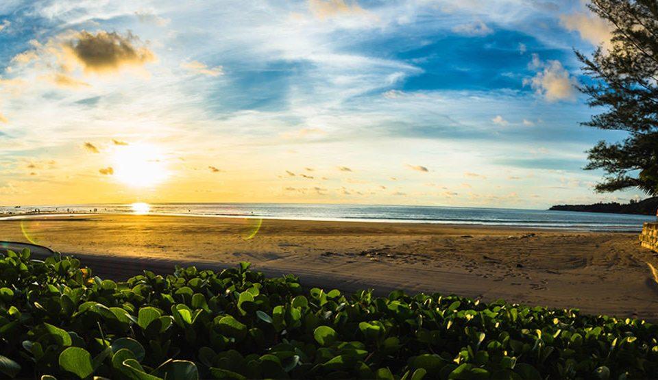 sky Nature shore Beach horizon cloud Sea Coast Ocean tree Sunset grass sunlight morning field sunrise evening wave dawn dusk landscape flower Sun sandy