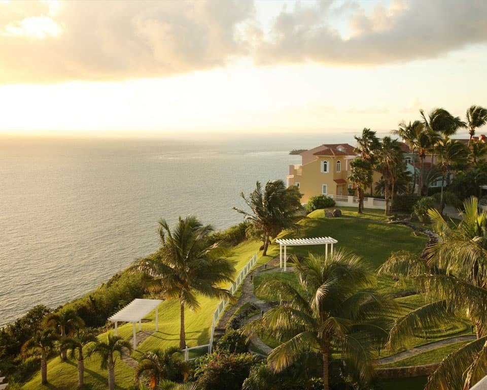sky water Sea Beach Coast Ocean shore arecales Nature caribbean Resort cape tropics plant