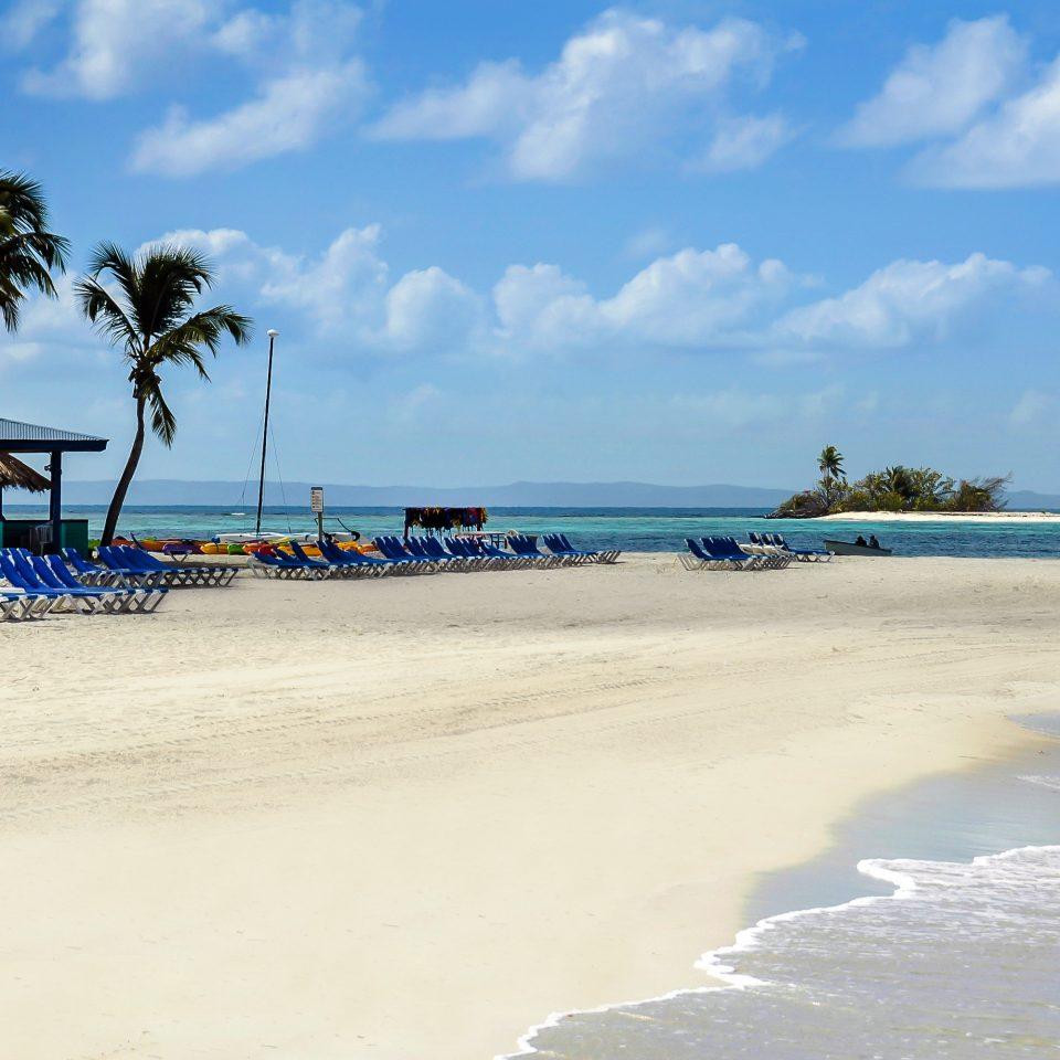 sky Beach water shore Nature Sea Ocean Coast sand wind wave wave cape sandy palm day