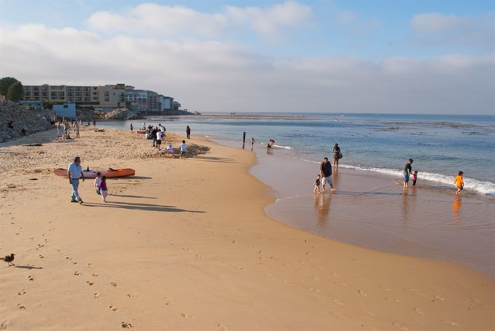 sky Beach water ground shore Nature Sea sand Ocean Coast wind wave wave cape sandy day