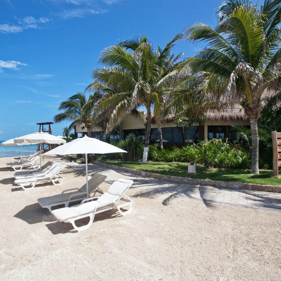 sky tree ground property Beach Resort Nature shore Coast caribbean Sea cape palm shade sandy day