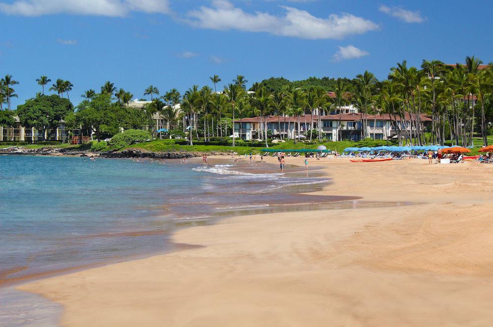 sky Beach shore Sea Nature Coast walkway boardwalk sand Resort lined sandy palm day