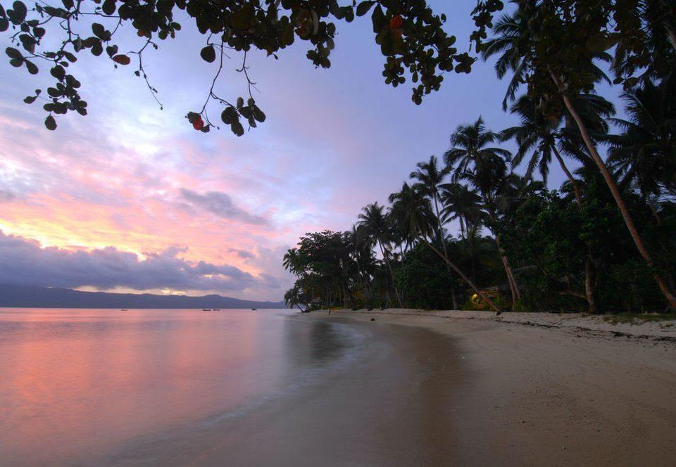 tree water sky atmospheric phenomenon Beach Nature River morning Sea dusk Coast dawn Sunset shore waterside