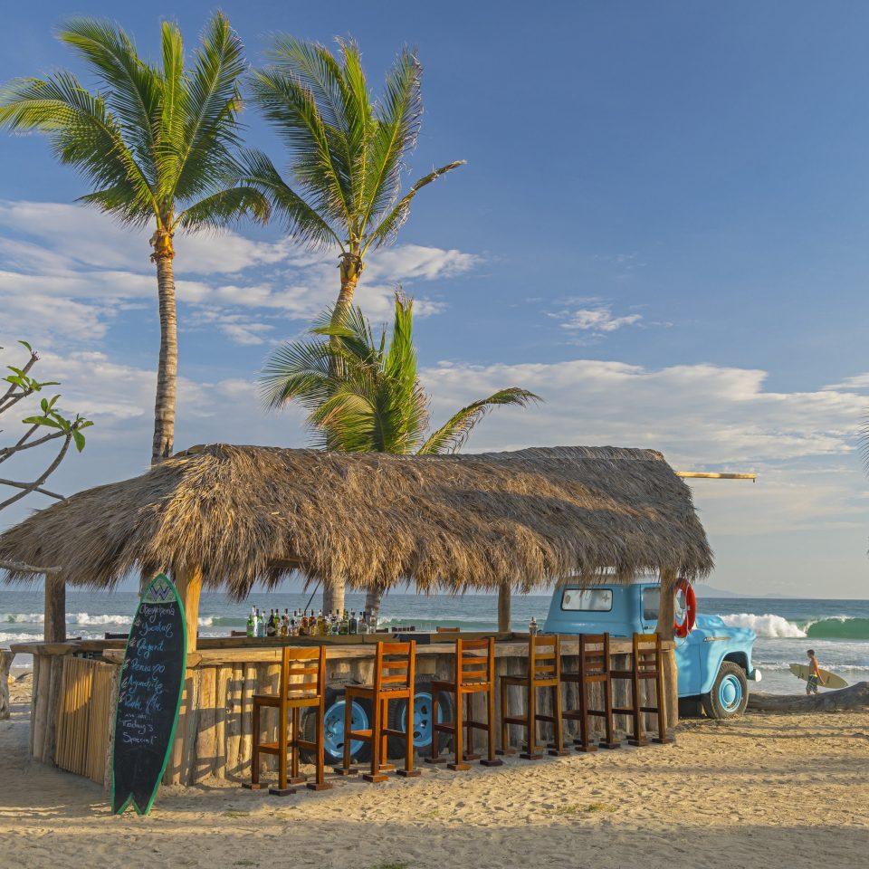 sky tree Beach Sea palm Ocean Coast arecales tropics palm family hut caribbean Resort sandy lined shore