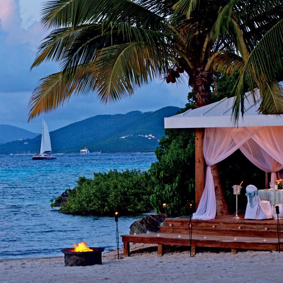tree water umbrella Beach Sea caribbean Ocean Resort arecales tropics palm Coast shade lined swimming shore sandy