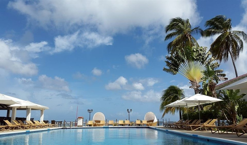 sky swimming pool caribbean Sea Resort Ocean Beach arecales Coast palm sandy day