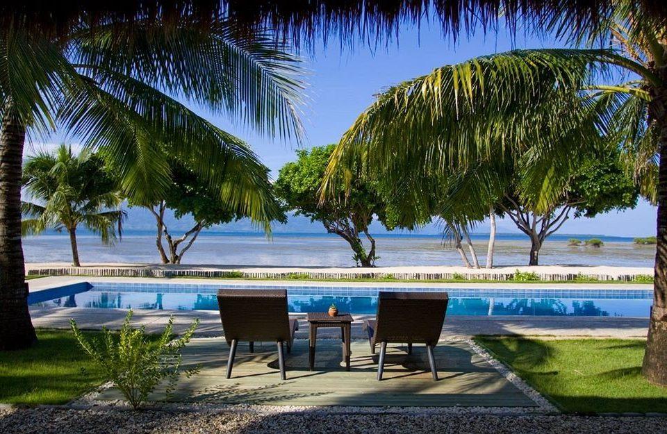 tree palm grass leisure plant Beach Resort arecales Ocean swimming pool caribbean palm family Coast Sea tropics shore lined