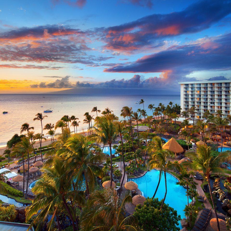 Beach Ocean Sea Coast caribbean shore Sunset evening Resort tropics dusk plant