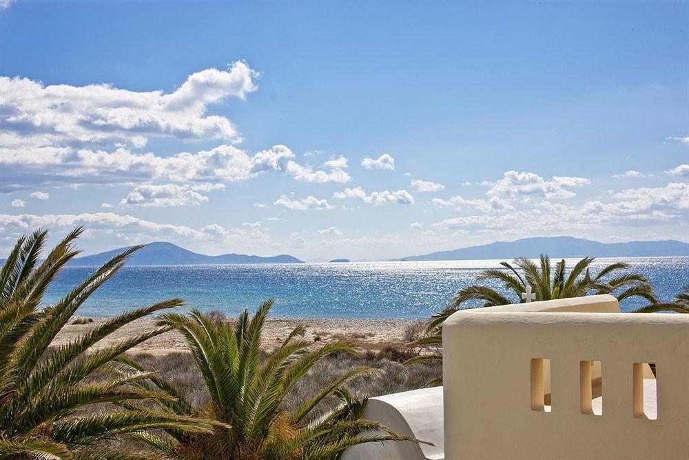 sky Ocean Sea Beach Coast shore caribbean tree arecales Resort cape plant agave palm