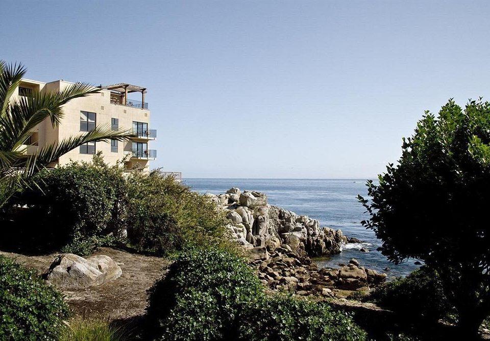 tree sky rock Sea Coast Ocean plant rocky shore Beach hill cape arecales terrain cliff cove hillside stone