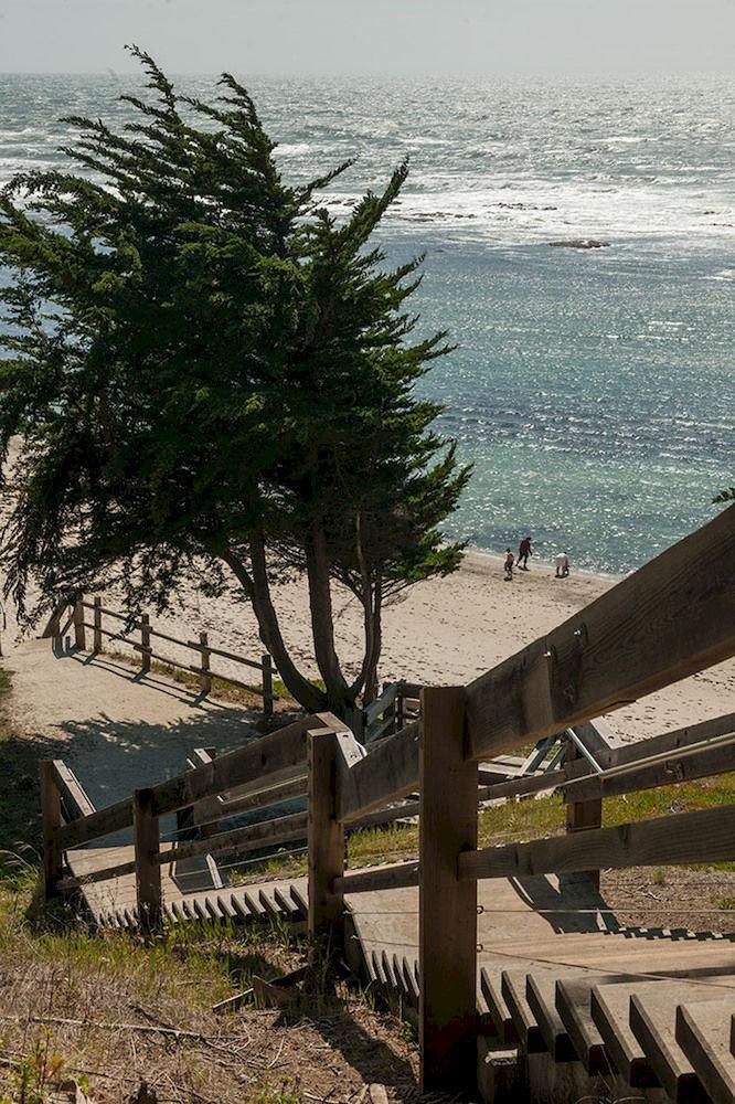 bench sky water park overlooking Coast tree shore Beach Sea wooden Ocean walkway shade day sandy