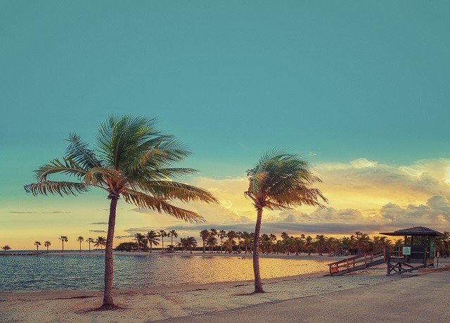 sky water Beach palm tree Sunset horizon shore Sea Ocean Coast morning plant arecales evening dawn dusk sunrise palm family Sun sandy lined line