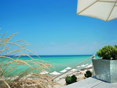 sky water umbrella Beach Sea Ocean caribbean Coast wind lawn swimming pool shore palm sandy