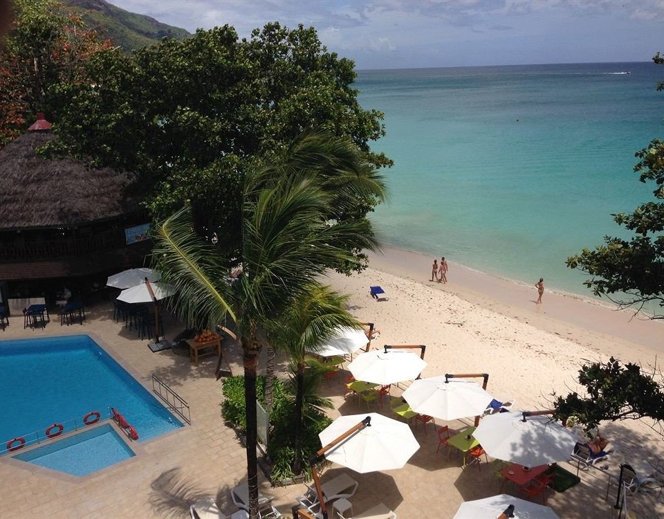 tree Beach Resort Sea caribbean Coast swimming pool shore