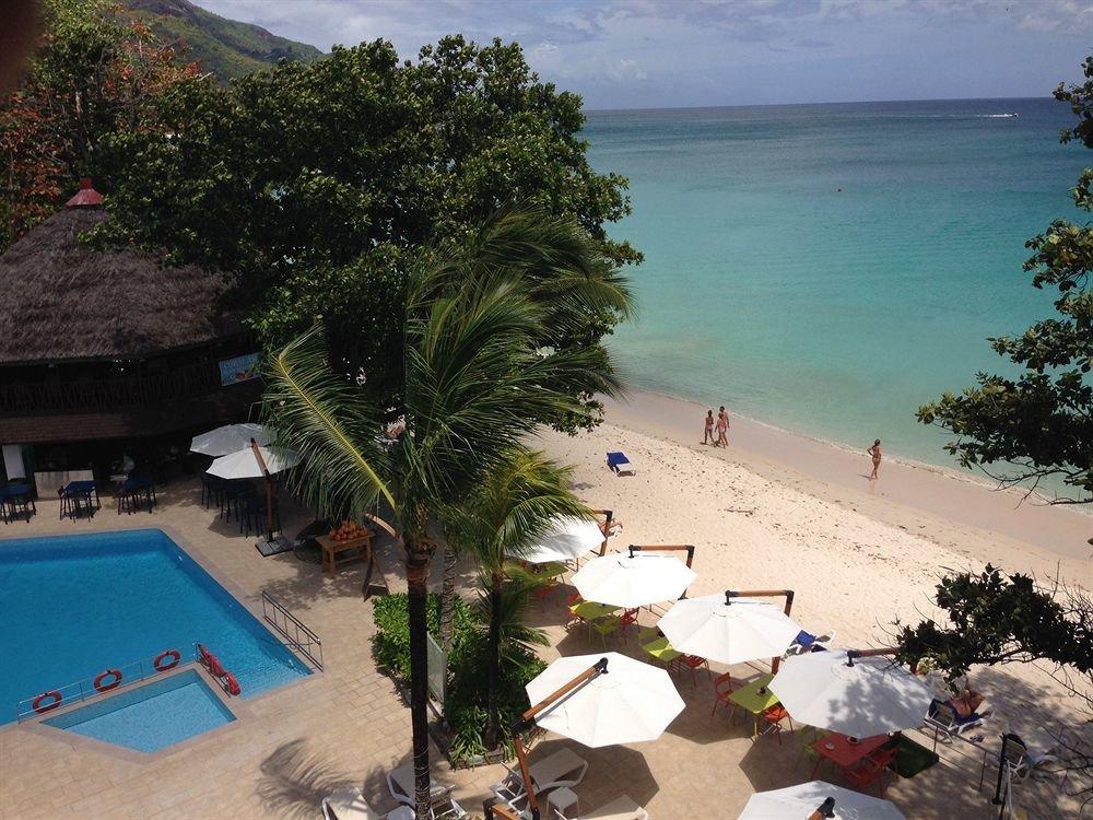 tree Beach Resort Sea caribbean Coast swimming pool shore
