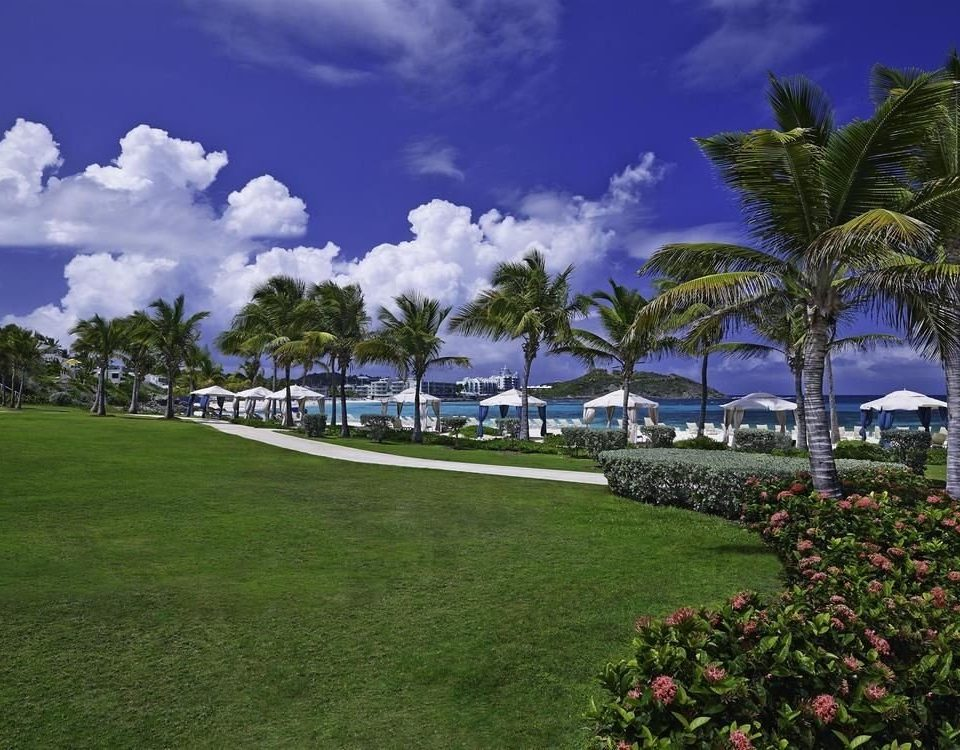 grass sky structure tree Resort sport venue arecales Sea Coast caribbean lawn tropics Beach flower plant day lush