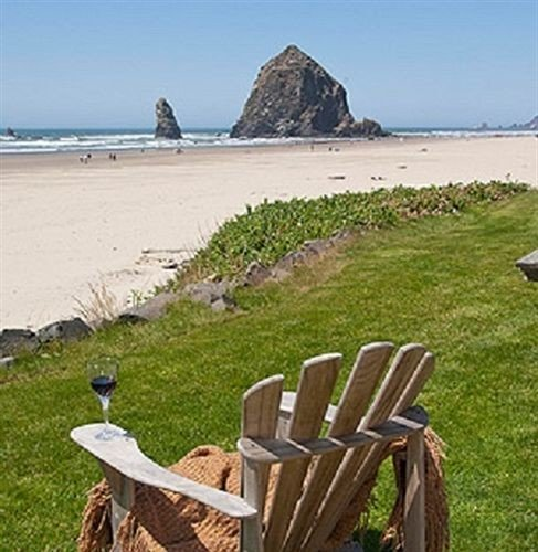 grass sky bench Beach shore Coast seat Sea chair overlooking