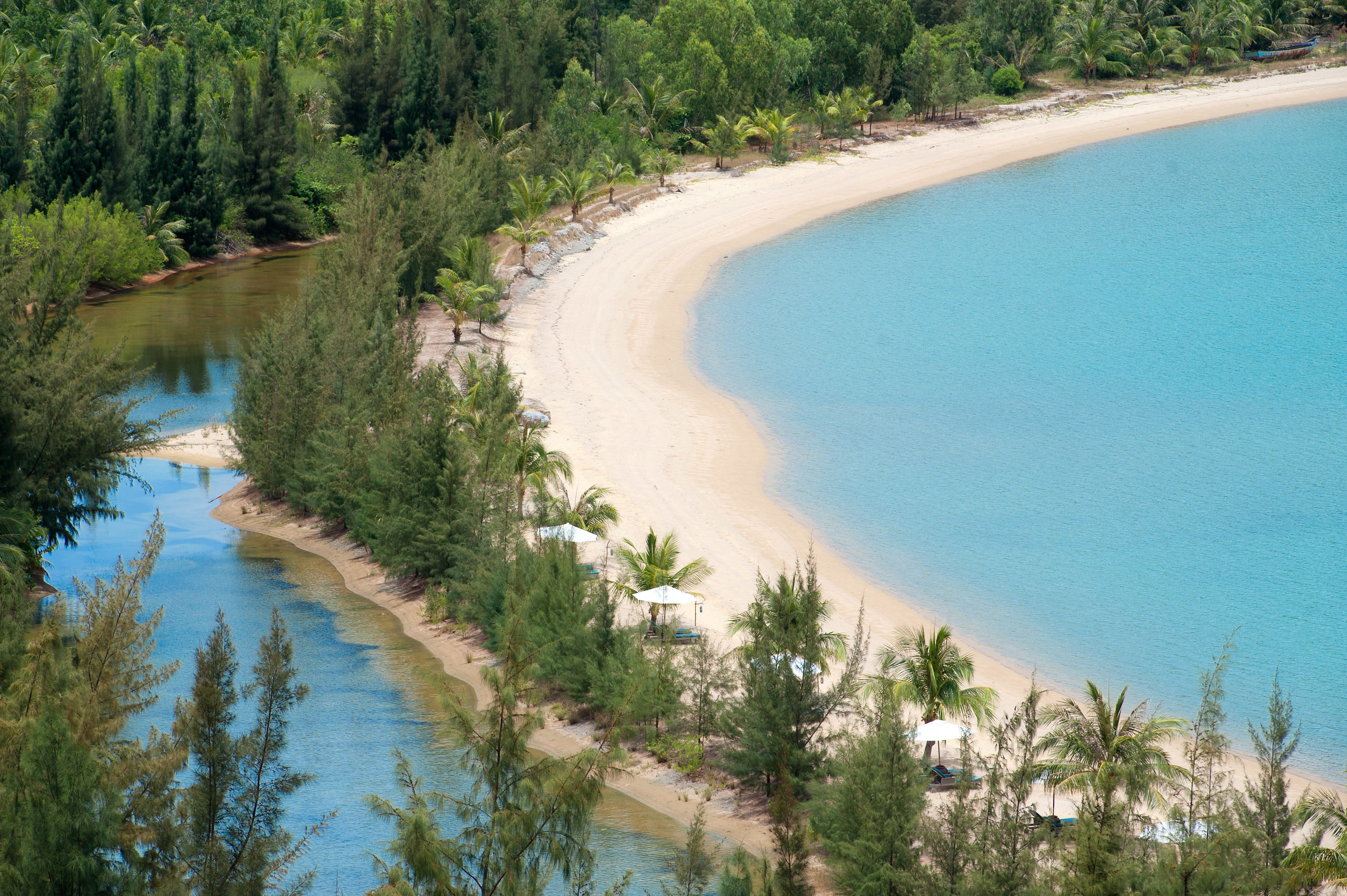 Beach Country Eco Forest Grounds Jungle Mountains Nature Outdoor Activities Scenic views Tropical Waterfront tree water River grass ecosystem reservoir Lake waterway edge Lagoon surrounded