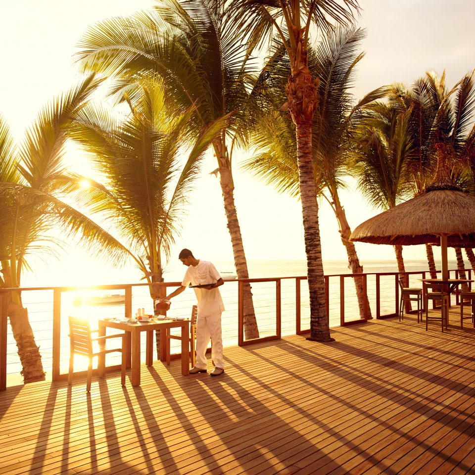 Deck Dining Drink Eat Luxury Resort Romantic tree sky ground Beach palm morning arecales Sun Sunset evening walkway boardwalk sunlight palm family plant lined sandy shade