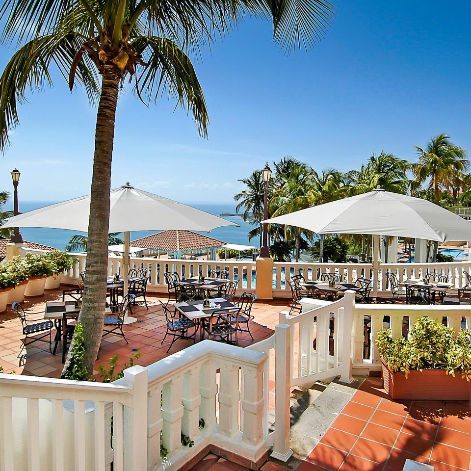 tree sky property Resort building Beach palm walkway arecales home swimming pool caribbean Deck Garden sandy
