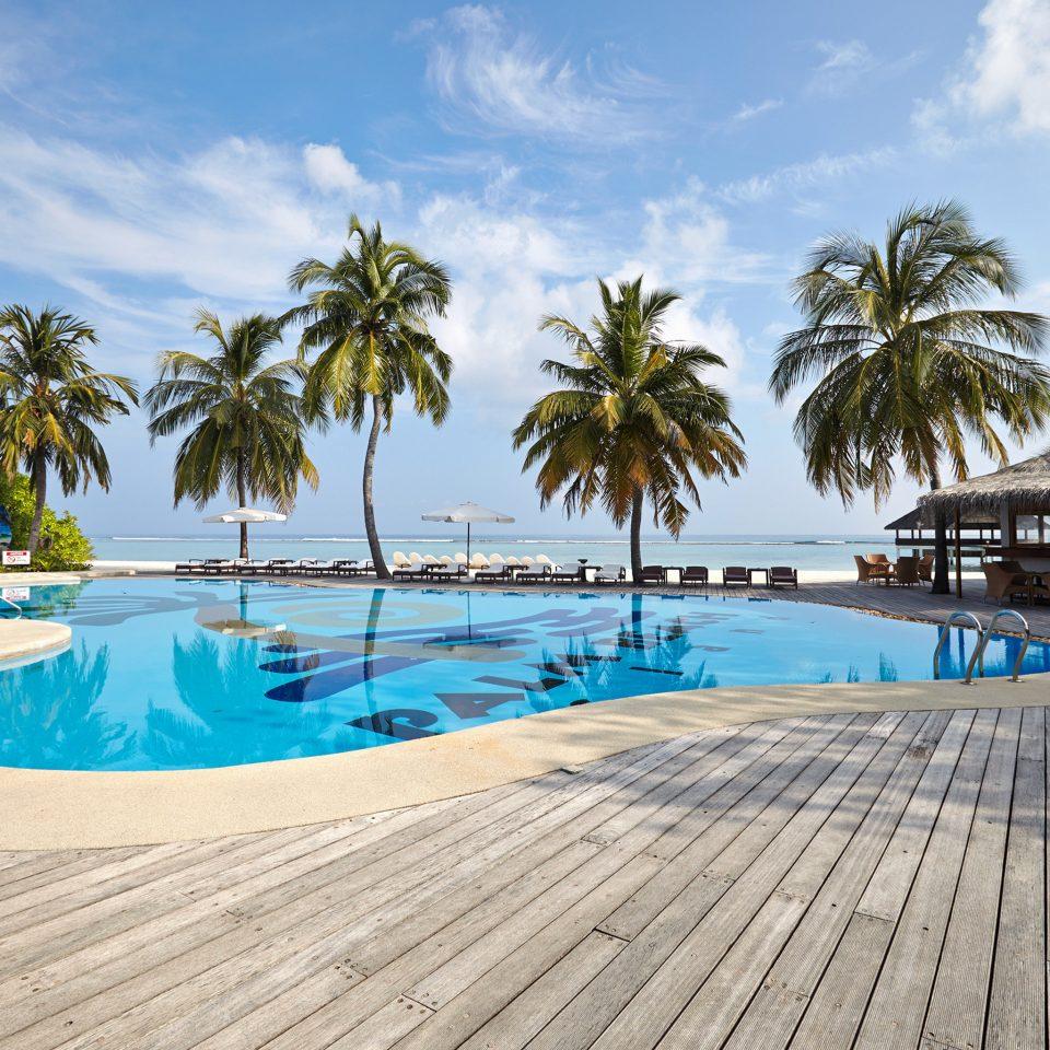 sky tree Beach palm swimming pool Pool leisure Resort Sea caribbean Ocean Lagoon shore walkway arecales blue Deck lined sandy