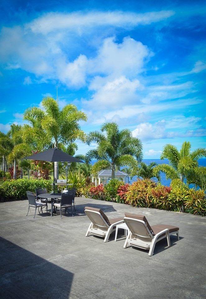 Deck Patio Resort Scenic views tree sky Beach Sea empty day