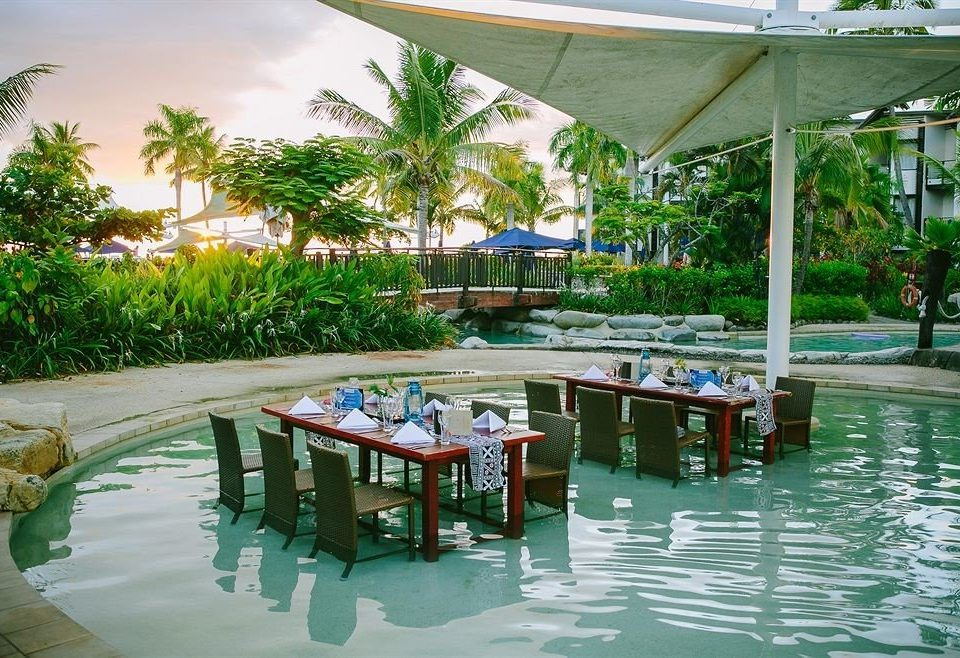 tree leisure swimming pool Resort Pool restaurant arecales caribbean Beach Deck