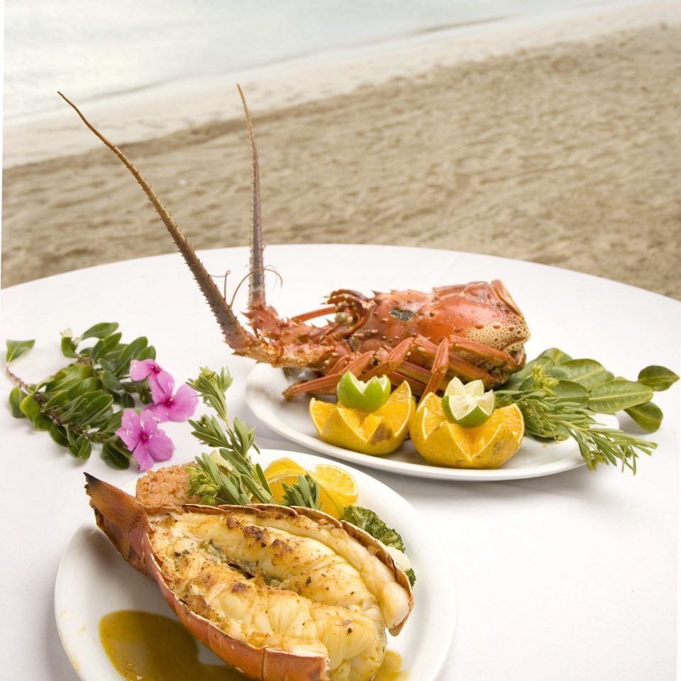 Beach Dining Drink Eat Family Honeymoon Island Romance Romantic Tropical Waterfront plate food fish restaurant cuisine meat Seafood sense breakfast piece de resistance