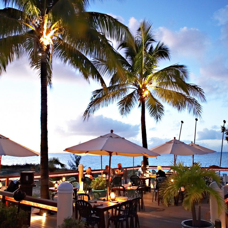 Dining Drink Eat Family Island Patio Resort Scenic views Terrace Tropical tree sky palm Beach arecales caribbean palm family lined plant tropics shade