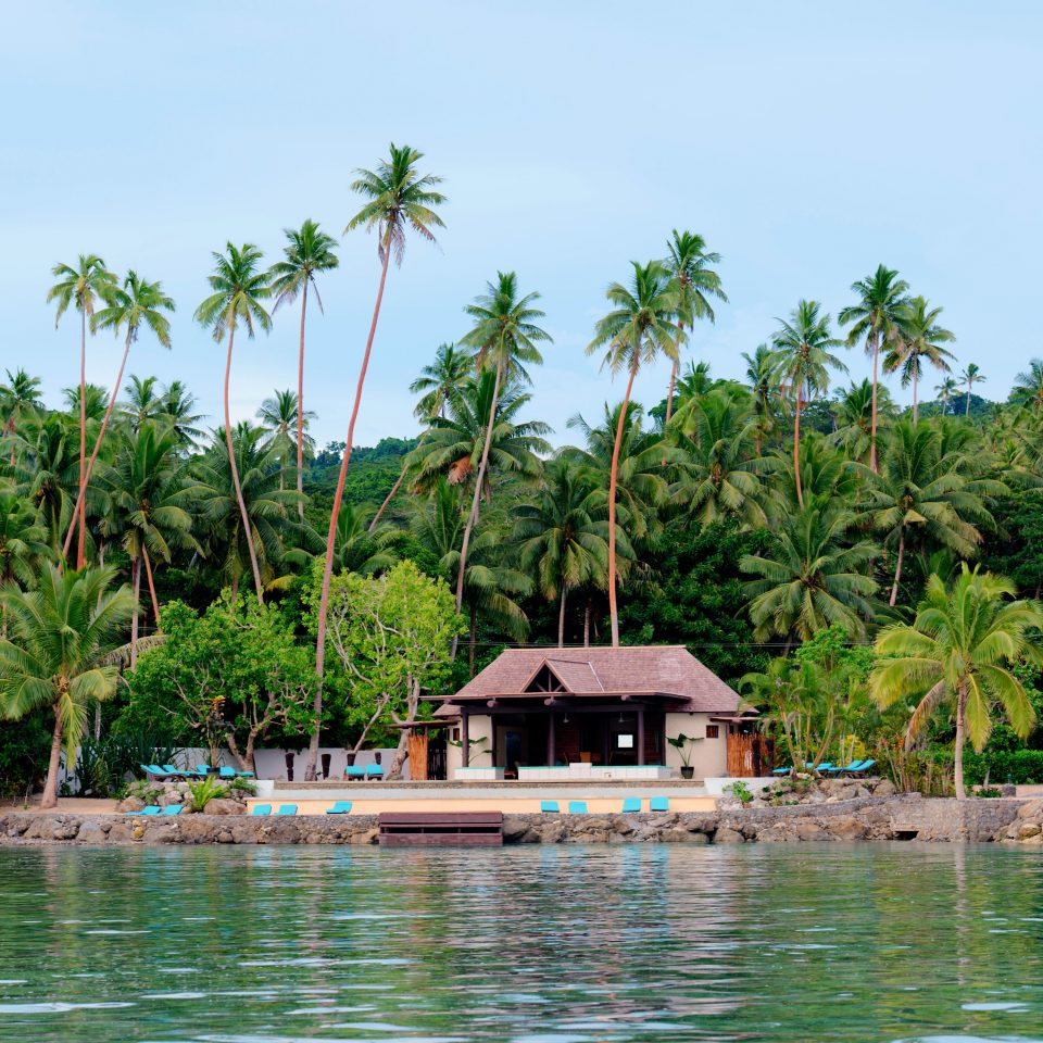 Eat Nature Outdoors Scenic views Waterfront tree sky water umbrella palm Resort tropics Lagoon arecales Jungle Beach caribbean swimming pool Island Sea surrounded swimming lined day