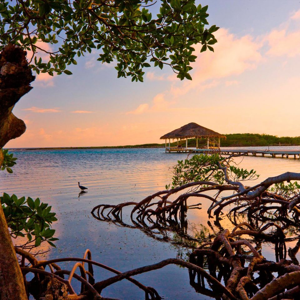 Eco Grounds Island Outdoor Activities Romantic Scenic views Sunset Waterfront water tree sky plant River Lake Sea Resort arecales landscape evening tropics Beach overlooking shore