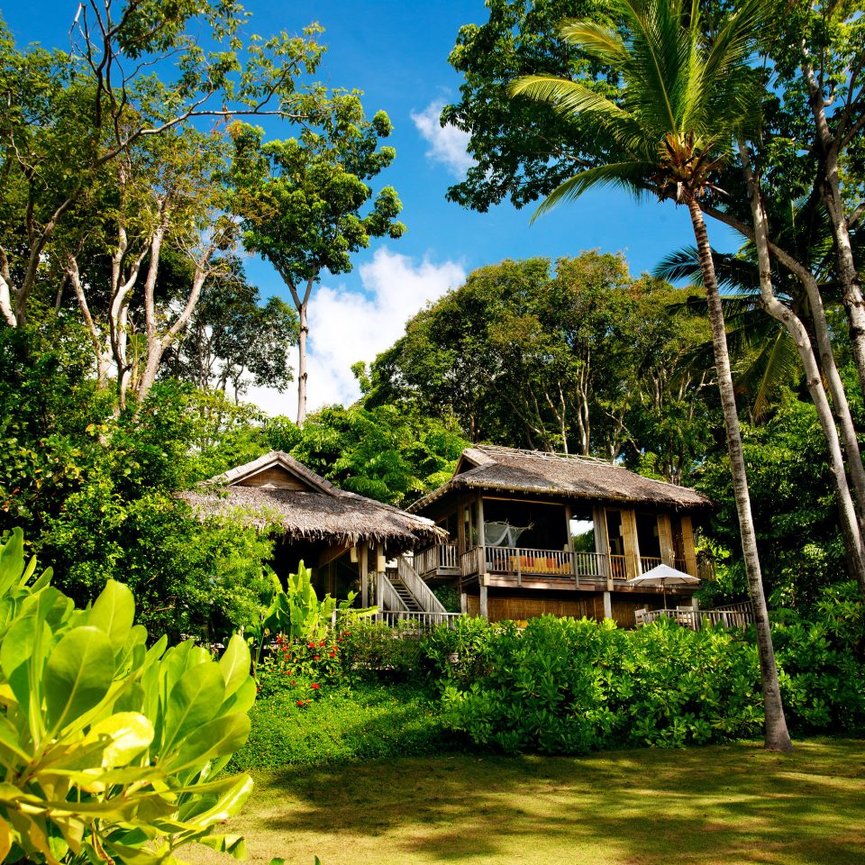 Beach Exterior Garden Grounds Hotels Phuket Thailand Tropical tree habitat natural environment plant botany house Jungle Forest tropics arecales woody plant rainforest rural area Resort flower plantation surrounded