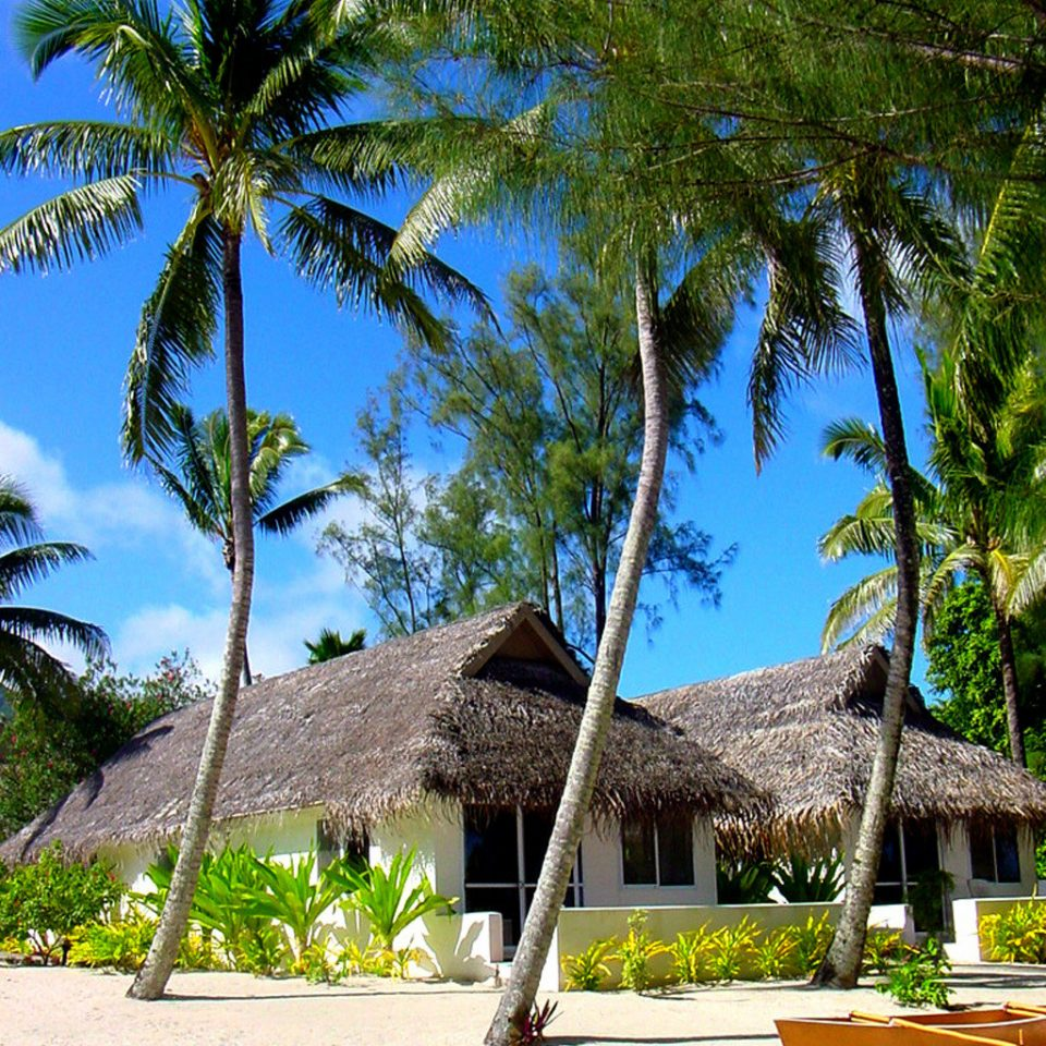 Beach Exterior Grounds Romance Romantic Waterfront tree sky palm plant Resort arecales tropics palm family caribbean Jungle Villa shade Garden sandy