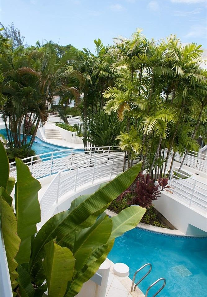 Exterior Luxury Pool Tropical tree swimming pool property caribbean Resort arecales Villa tropics Beach plant palm backyard condominium