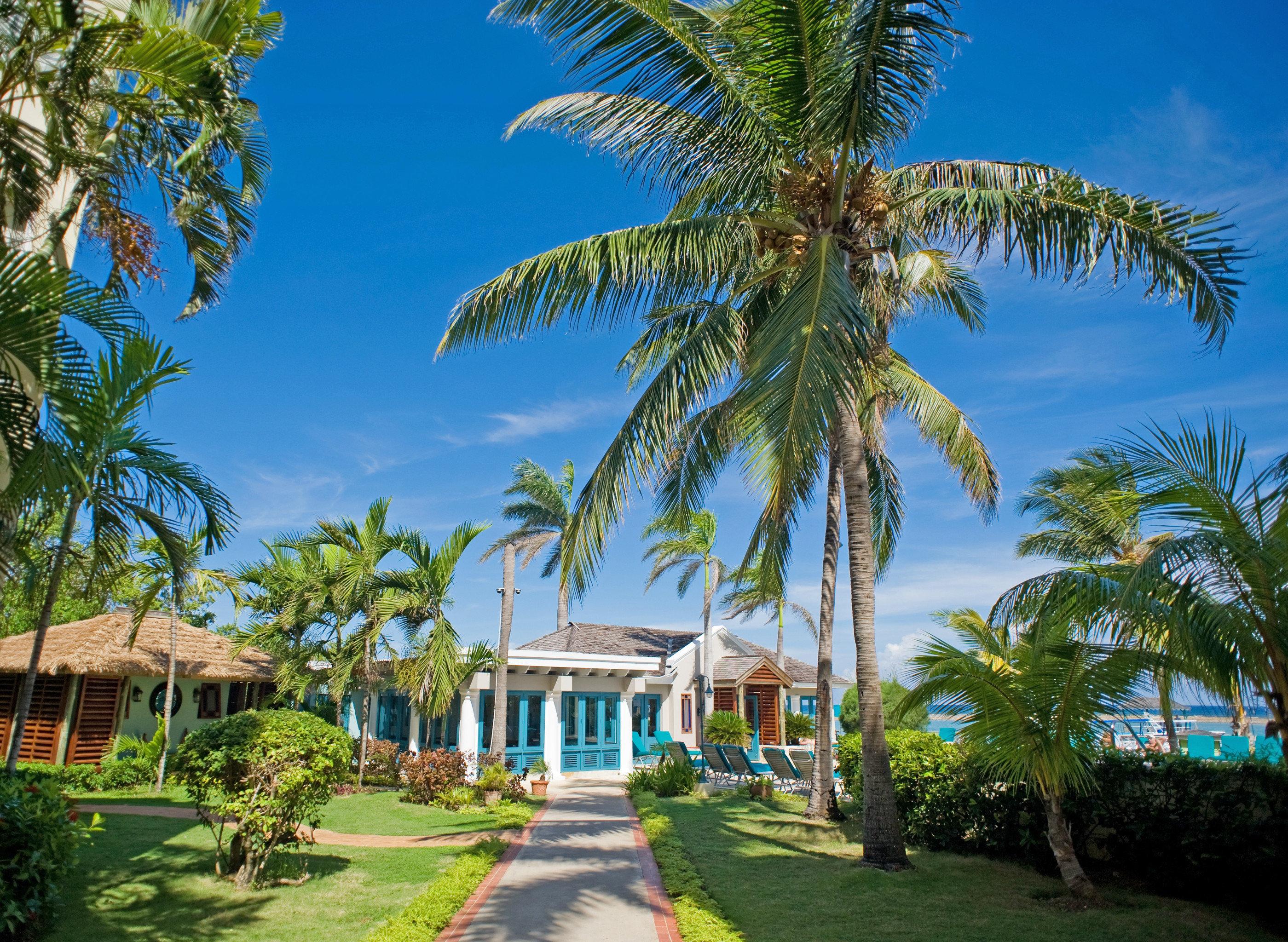 Grounds Island tree palm sky Resort palm family caribbean Beach arecales tropics lined plant Garden shade bushes