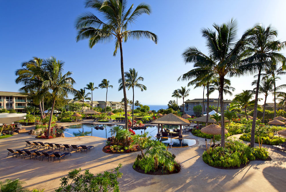 Grounds Lounge Pool Tropical sky palm tree Resort palm family arecales Beach plant condominium tropics caribbean lined Garden