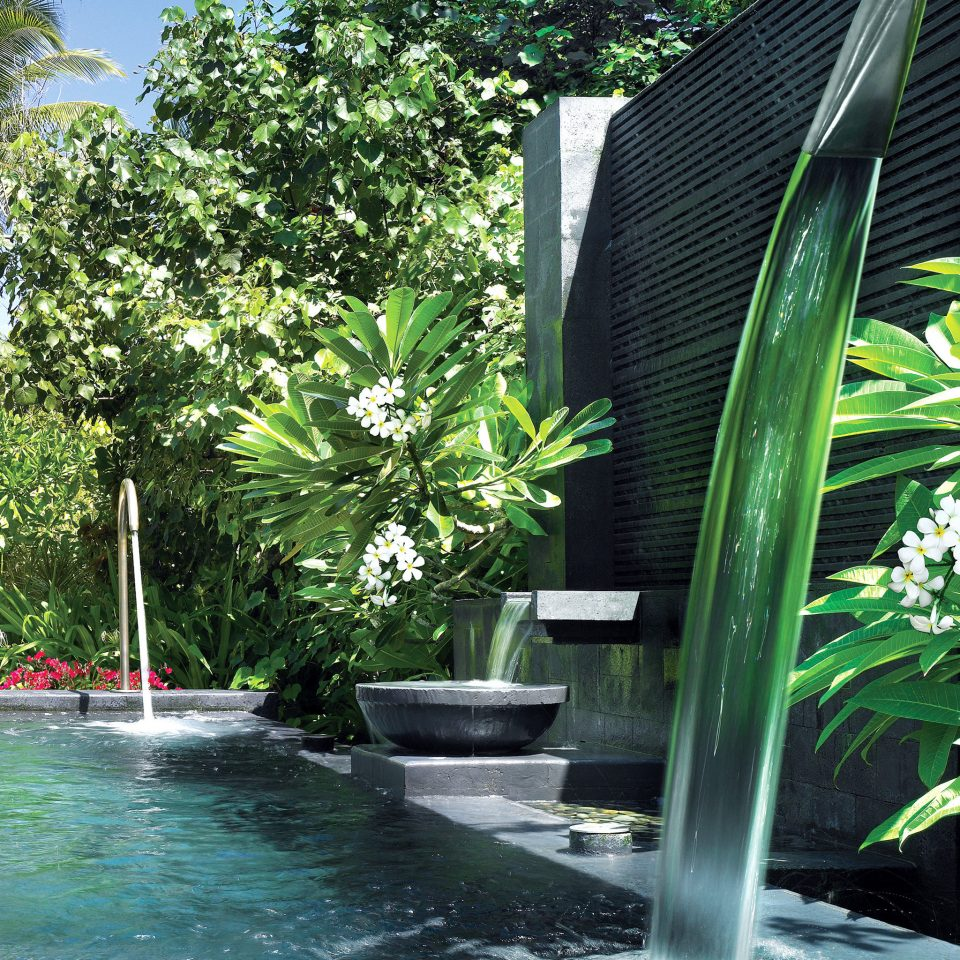 Beach Luxury Pool Romance Romantic Tropical Wellness tree water swimming pool water feature fountain Garden Jungle