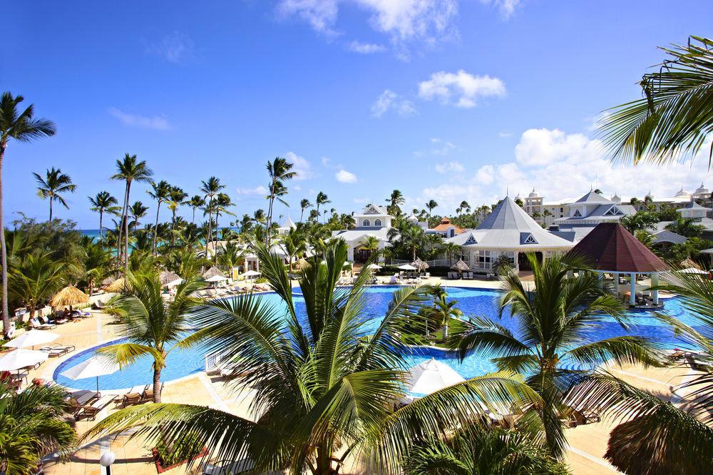sky tree palm Beach Resort caribbean plant tropics arecales Sea palm family Lagoon shade lined sunny sandy Garden