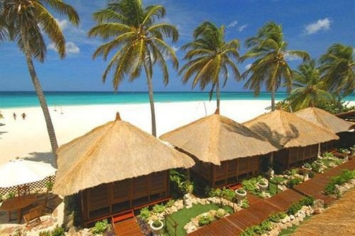 palm tree Resort property caribbean Pool Beach eco hotel Village plant hut lined Garden shore