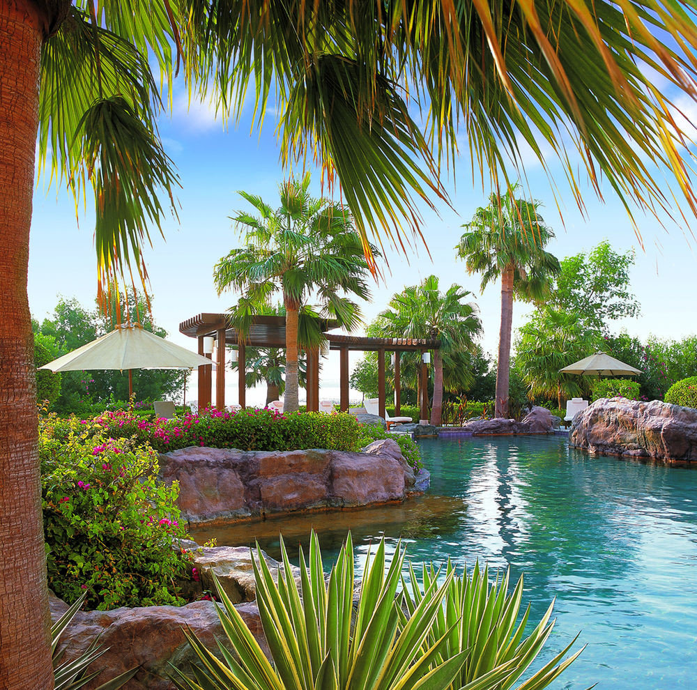 tree palm water swimming pool property plant Resort Beach palm family arecales Pool tropics caribbean lined colorful Garden surrounded
