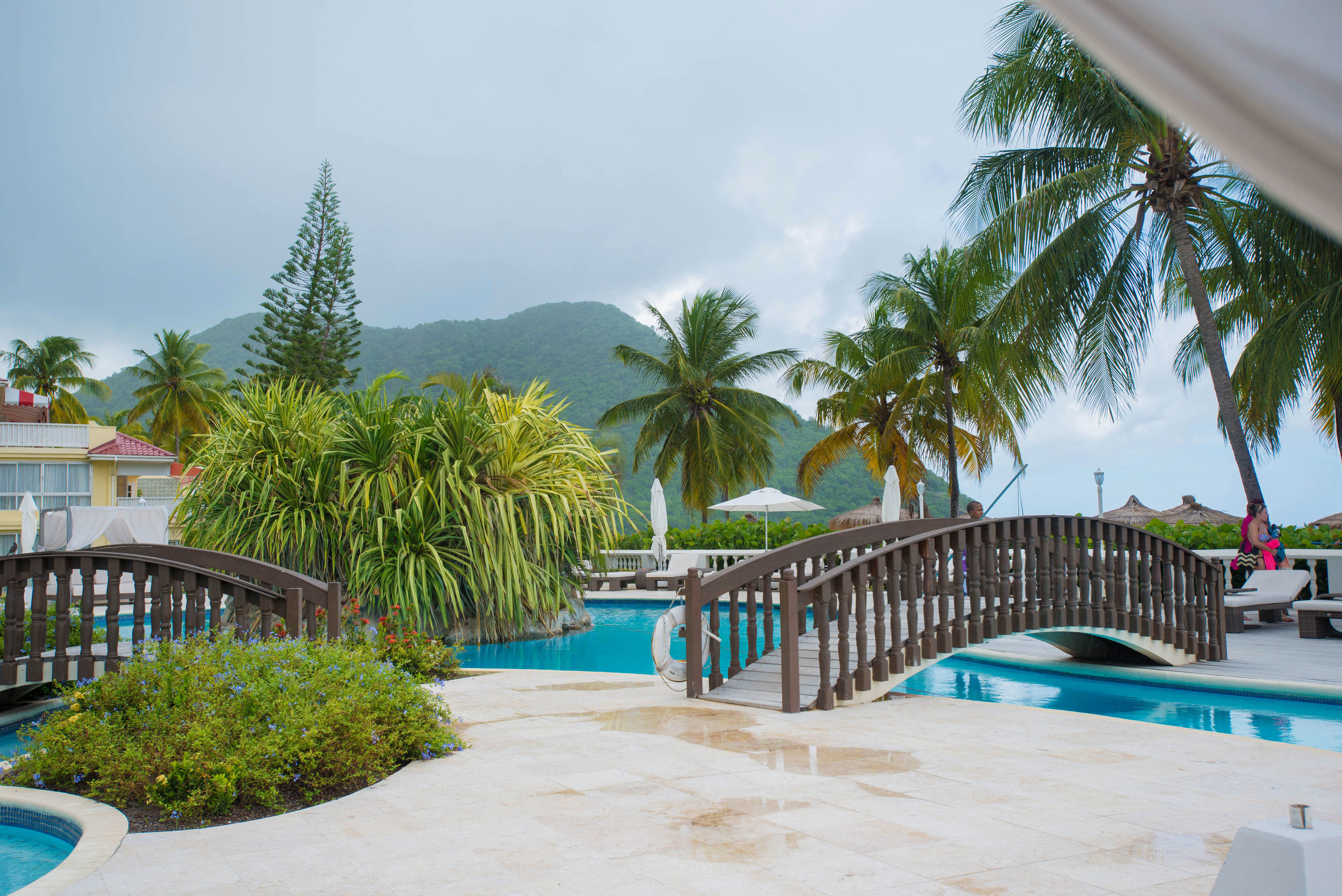tree palm Pool Resort leisure property caribbean swimming pool Beach plant arecales Villa tropics condominium Garden swimming lined
