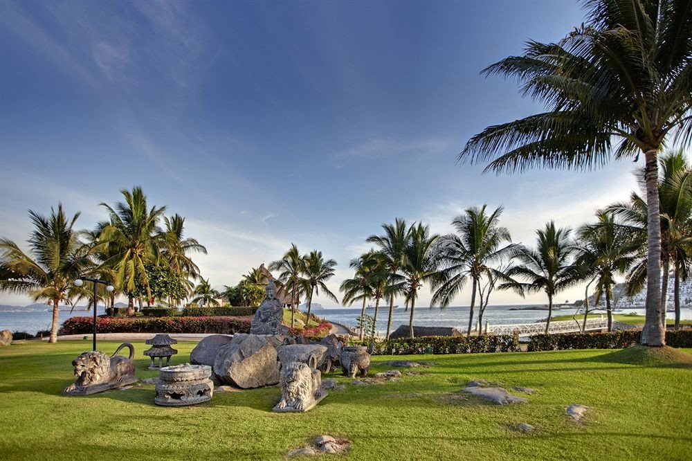 grass tree sky palm Resort plant arecales Beach palm family lawn tropics grassy Garden shade lush