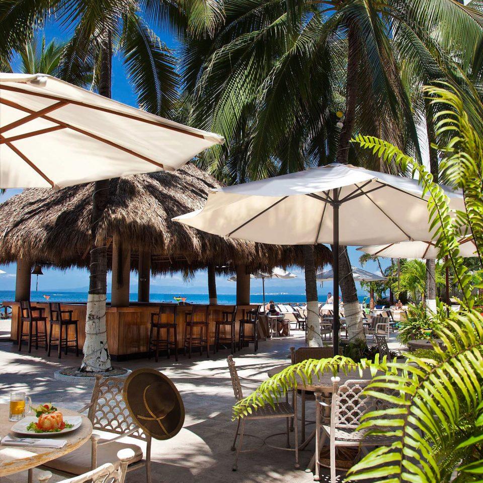 tree Resort Beach caribbean arecales walkway restaurant tropics palm family lined plant Garden palm shade day